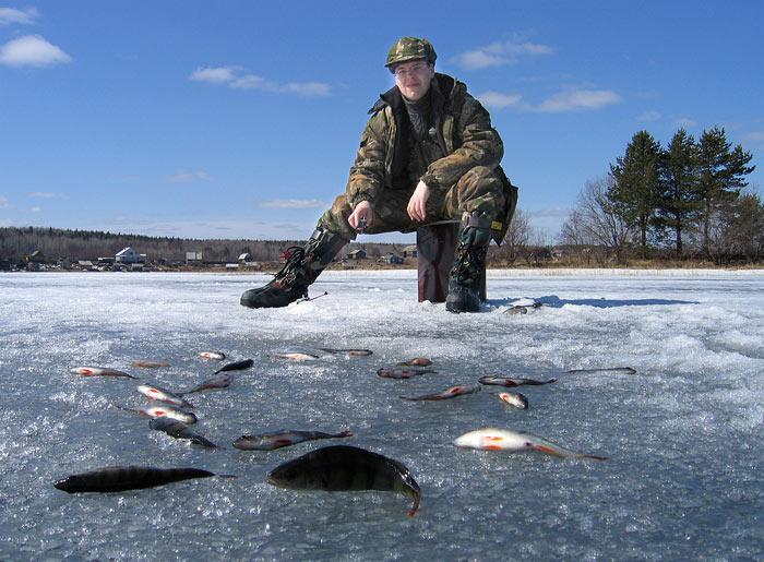Когда ловить рыбу сетями зимой видео